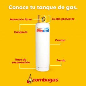 Gas lp y gas natural | Salomón Issa Tafich